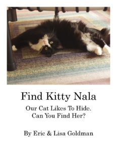 find-the-kitty-book-cover