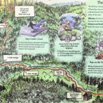 Hiking the Headwaters Forest Reserve